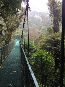 One of the Monteverde Cloud Forest's hanging bridges.